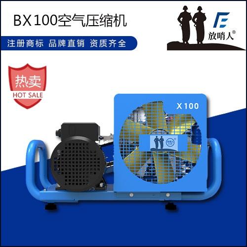 亳州X100空气压缩机 空气填充泵